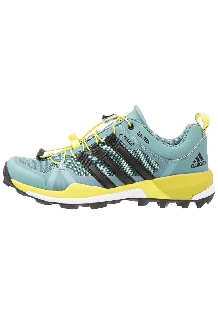 adidas Performance TERREX BOOST GTX Półbuty trekkingowe vapour steel/core black/ice green - IKN75
